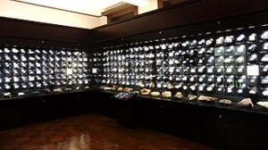 320px-Mineral_exhibition_room_of_the_National_Museum_of_Nature_and_Science_2